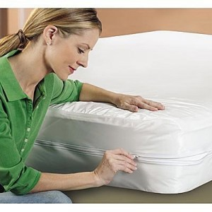 Bed-Bug-Mattress-Encasement-300x300